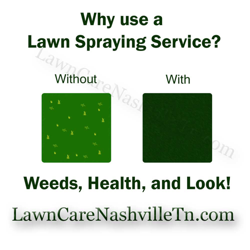 Nashville Lawn Fertilization